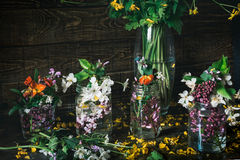 Vivid picturesque bouquets of colorful spring flowers in glass vases bottles on a dark wooden background table Royalty Free Stock Images
