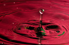 Vivid Red Water Drop and Splash Stock Image
