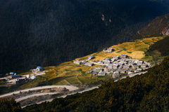 Vivid Scenery. A Vivid Scenery in Yading, Sichuan, China Royalty Free Stock Photography