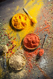 Vivid spices and herbs on old board Royalty Free Stock Images