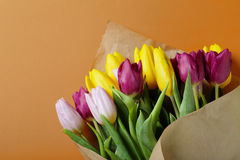 Vivid spring bouquet of tulips Stock Images