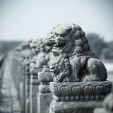 Vivid stone lion. Ancient vivid stone lion on the bridge in beijing,China Royalty Free Stock Photography