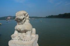Vivid stone lion Stock Photos
