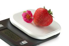 Vivid strawberries on kitchen scale. Vivid colored fruit on kitchen scale Stock Photography