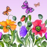 Vivid summer background. Beautiful colorful poppy flowers and flying butterflies on lilac background. Square shape. Seamless floral pattern. Watercolor Royalty Free Stock Photos
