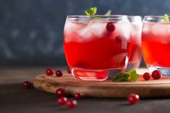 Vivid summer refreshing drink with cranberry, ice cubes and mint on the cutting board. Vivid summer refreshing drink with cranberry, ice cubes and mint on the Royalty Free Stock Images