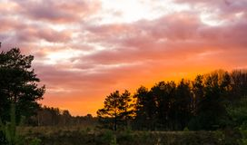 Vivid sunset in a moorland landscape, sundown giving a colorful effect in the sky and clouds royalty free stock photography