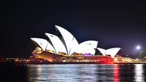 Vivid Sydney 2015 stock video