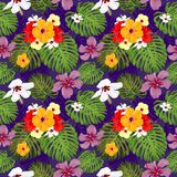 Topical Botany Hibiscus flower and Monstera leaf seamless pattern chic fashion design with dark purple background. Vivid Topical Botany Hibiscus flower and royalty free illustration