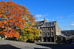 Vivid tree colours in Lancaster Royalty Free Stock Photos