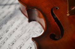 Vivid Viola Royalty Free Stock Images