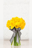 Vivid yellow daffodil bouquet Stock Photos
