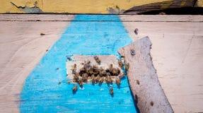 Vivienda de la abeja Colmena rústica de la abeja Imagen de archivo