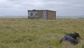Vivienda rural Fotografía de archivo