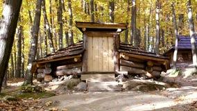 Vivienda temporal de madera de la montaña en el bosque cárpato metrajes
