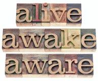 Vivo, despierto, enterado Foto de archivo