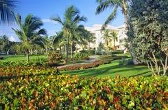 Vivre dans le paradis tropical Images libres de droits