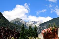 Vivre dans les montagnes de Dolomiti di Brenta Image stock