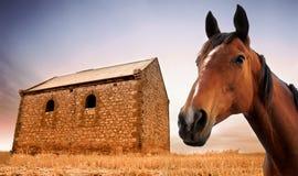 vivre II rural Photographie stock libre de droits