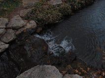 Viwes da queda da água foto de stock
