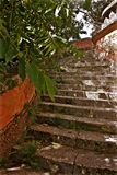 Vizcaya museum och trädgårdstentrappa Arkivbilder