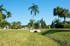 Vizinhança tropical Fotografia de Stock