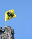 Vlaamse leeuw Royalty-vrije Stock Fotografie