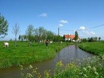 Vlaanderen stock afbeelding