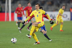 Vlad Chiriches Royalty Free Stock Images