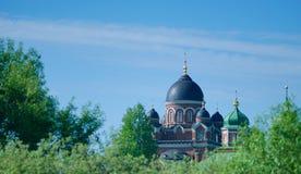 Vladimir Cathedral av den Spaso-Borodino kloster Royaltyfri Foto