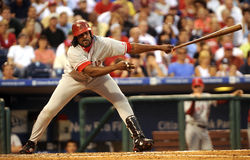 Vladimir Guerrero Stock Photo