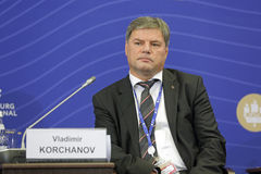 Vladimir Korchanov Royalty Free Stock Image