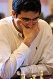 Vladimir Kramnik Stock Images