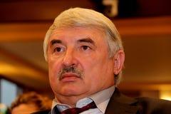 Vladimir Marchenko Imagen de archivo libre de regalías
