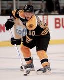 Vladimir Sabotka Boston Bruins Fotografía de archivo libre de regalías