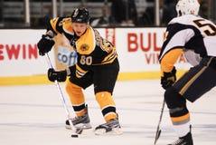 Vladimir Sobotka, Boston Bruins Fotografia de Stock Royalty Free