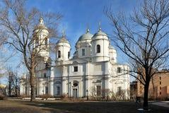 Vladimirskiy Cathedral Royalty Free Stock Photos