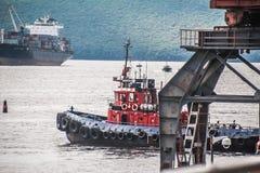 Vladivostok en zijn schepen royalty-vrije stock afbeelding