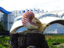 Vladivostok kray/Ryssland - September Primorsky 8 2018: Primorsky akvarium, den vetenskapliga och bildande mitten i Vladivostok, royaltyfria foton