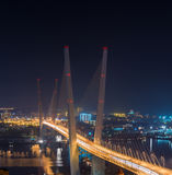 Vladivostok. Night view. Royalty Free Stock Photo