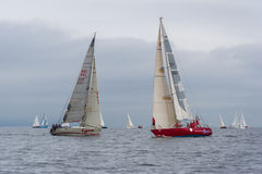 Vladivostok, Russia - circa August 2012: Regatta for Peter the Great Gulf Cup - sailed boat race in Vladivostok,  Russia Royalty Free Stock Image