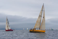Vladivostok, Russia - circa August 2012: Regatta for Peter the Great Gulf Cup - sailed boat race in Vladivostok,  Russia Stock Photography