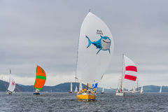 Vladivostok, Russia - circa August 2012: Regatta for Peter the Great Gulf Cup - sailed boat race in Vladivostok,  Russia Royalty Free Stock Photos