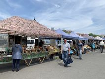 Vladivostok, Russia, May, 25, 2019. Food fair in the central square of Vladivostok - the square of the Fighters for the power of t. Vladivostok, Russia. Food stock images