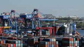 Vladivostok van de overzeese de activiteit handelhaven stock video