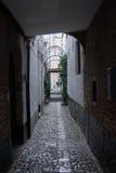 Vlaeykensgang Antwerp Royalty Free Stock Photography