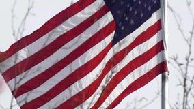 Vlag die over de lenteboom golven die in bloei wordt behandeld stock video