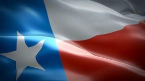 Vlag die van de video van Texas in wind golven Realistische de Vlagachtergrond van de Staat Amerikaanse Texas Flag Looping-close- stock footage