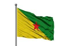 Vlag die van Frans-Guyana in de wind, geïsoleerde witte achtergrond golven royalty-vrije stock afbeelding
