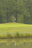 Vlag en het groene golfgebied Stock Fotografie